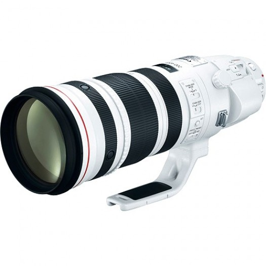 Canon EF 200-400mm f/4L IS USM ve 1.4x Extender