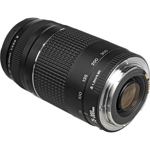 Canon EF 50 mm
