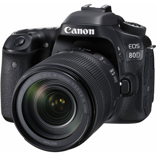 Canon Eos 80D 18-135mm Nano IS USM DSLR Fotoğraf
